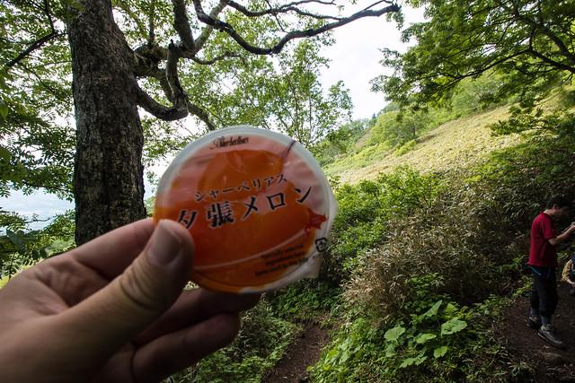 20150614-北海道羊蹄山(2日目)-0225.jpg