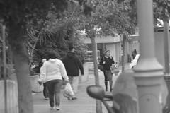 צילומי רחוב+spoting 022
