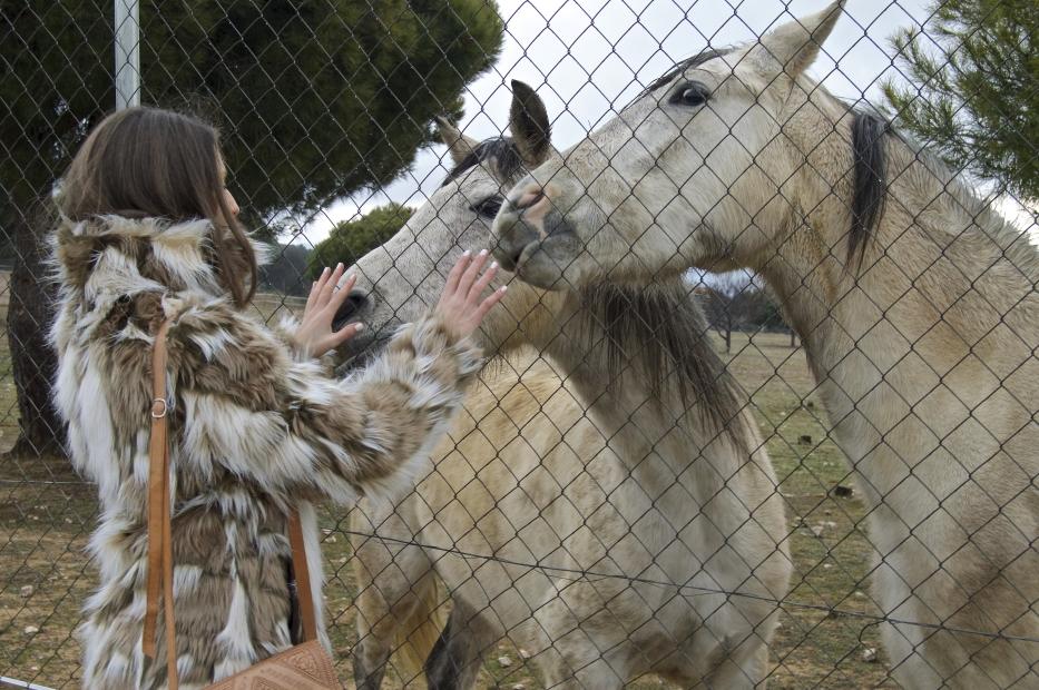 lara-vazquez-mad-lula-style-horses-countryside-winter