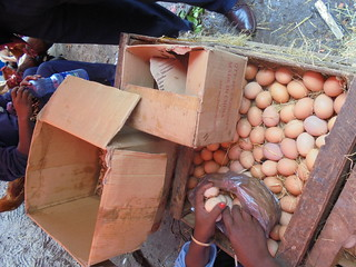 Wooden creates for egg packing and transportation (Photo:ILRI\LIVES SNNP team)