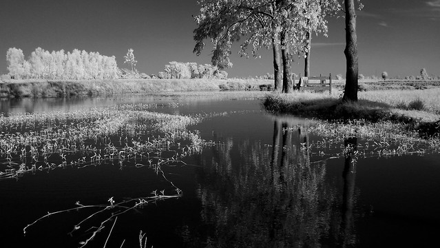 1 Bed lake side processed bw EPM1