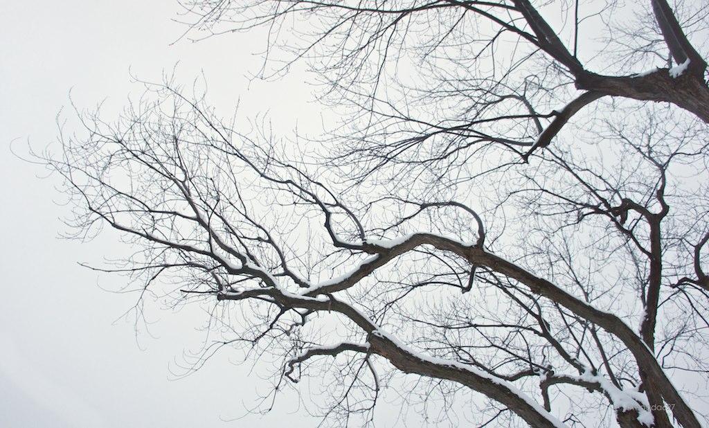 anteketborka.blogspot.com,   ciel 12 2