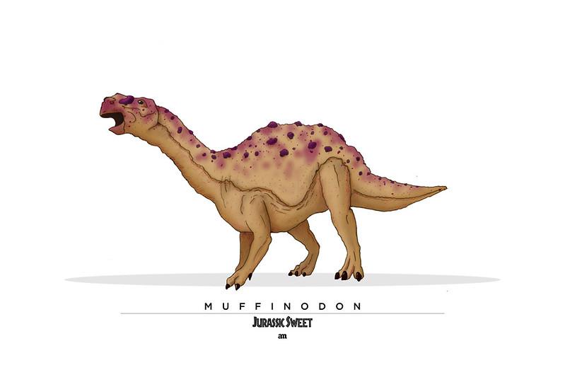 Muffinodon