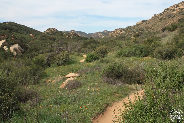 las virgenes canyon 43