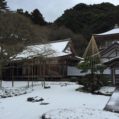 流石に雪積もってる。