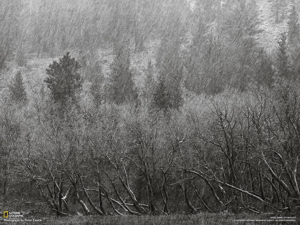 Peter Essick-rain-sleet-hillside