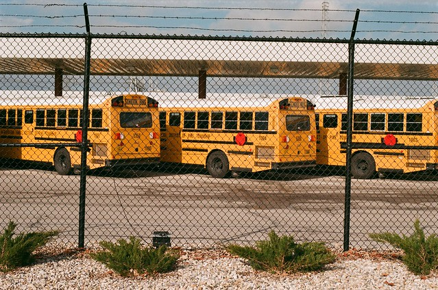 School Buses - Sears Lens