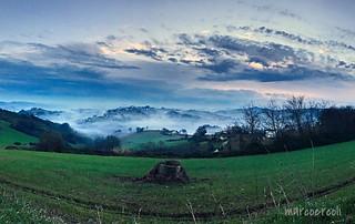 Fog on the hills