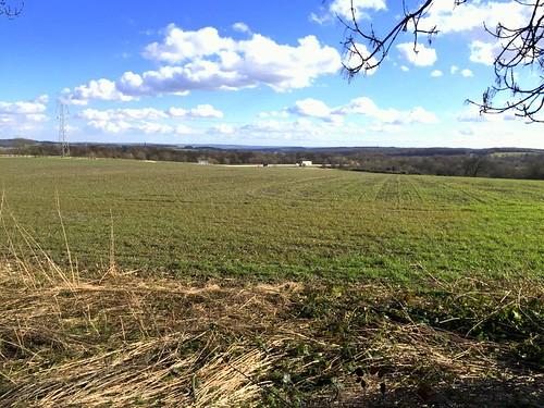 Farmland at Tankersley