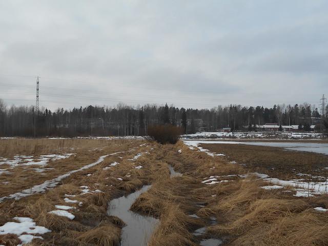 Poikkeuksellisen aikaista lumen sulamista Espoon Leppävaaran ja Karakallion välillä 27.2.2015