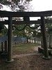 Torii (Gate of Shinto Temple)