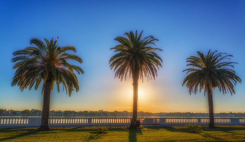 sunrise tampa other florida palmtrees processing nik bayshore hdr photomatix