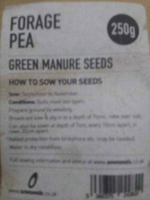 pea planting in Bed 14 (field has cardoon in it) by Midfields