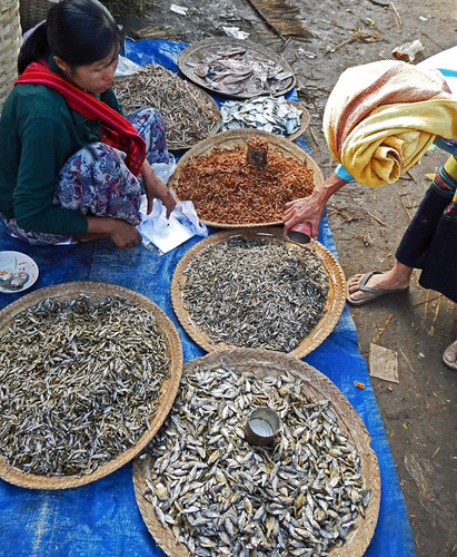 Dried Fish For Sale At the Weekly Market in the Village at the End of Inle Lake (Myanmar)