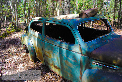 Abandoned Car in Woods (1 of 1)