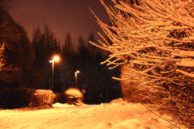 talvi on 030