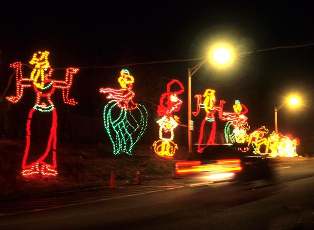 Christmas Light Display 9