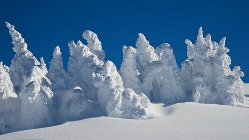 ski in ski out grand targhee