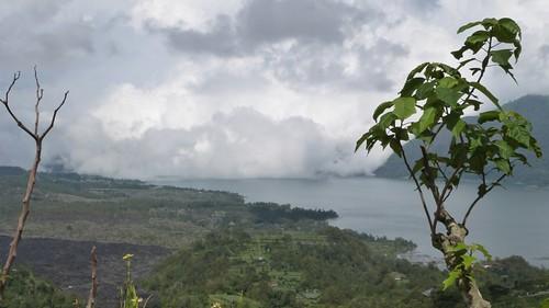 Bali-2-100