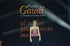gala VII Premis Gaudí (39)