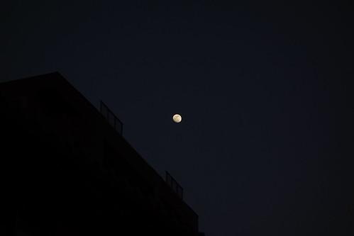 moon_2 黄色く見える月の写真。 画像中央に小さく見える。