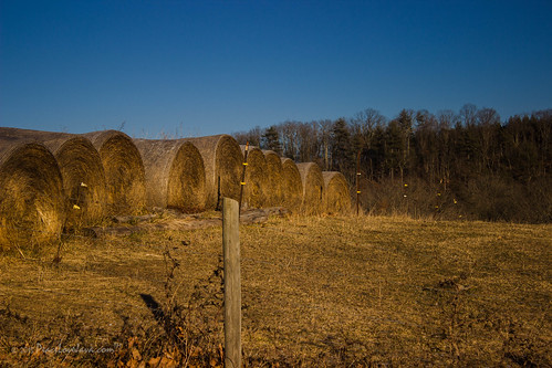 virginia unitedstates straw bales peacelovejava huntingridgeroad