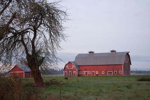 morning sun clouds barn sunrise landscape redbarn linncounty willamettevalley martinjones nikond5000