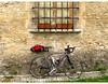 """""""Mit dem Fahrrad in der Provence"""""""