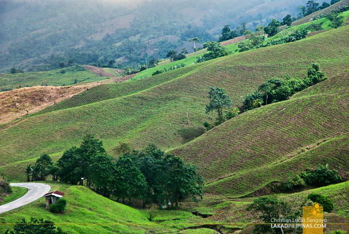 Rolling Hills of Nagtipunan, Quirino