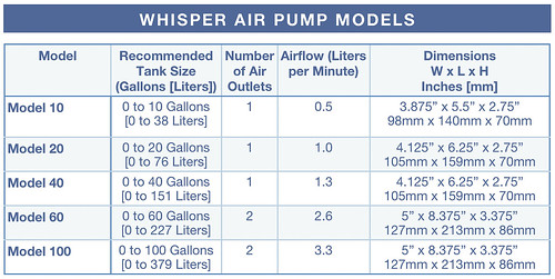Chart of Tetra Whisper Model 10 20 40 60 100