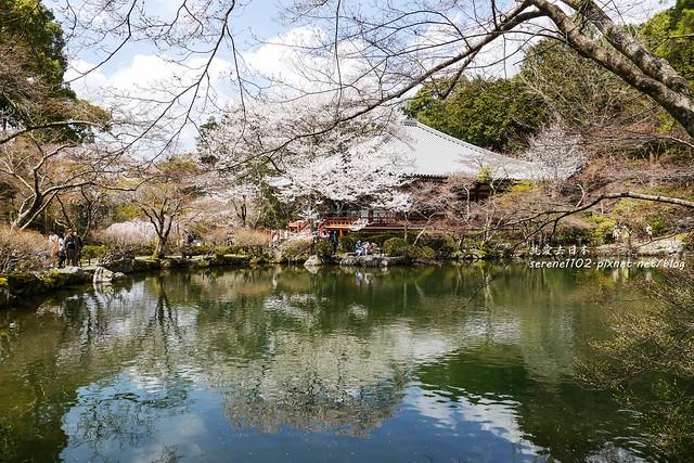 0402D8京都醍醐寺-1160449