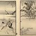 015-El álbum de los cien pajaros -Vol 2- Art-Thomas J. Watson Library by ayacata7