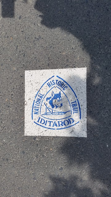 Iditarod start