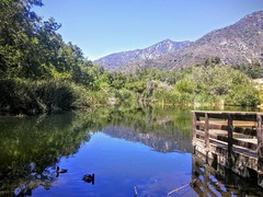 It was so peaceful at the hiking trail in Yucaipa, California. Perfect weather for being outside. #canon #canon_photos #johnkeraphotography #landscape #nature #california #beautiful #outdoors #day #photographer #photography #outside #environment #hike #hi