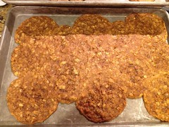 meal, anzac biscuit, baking, fried food, baked goods, produce, food, dish, cereal, cuisine,