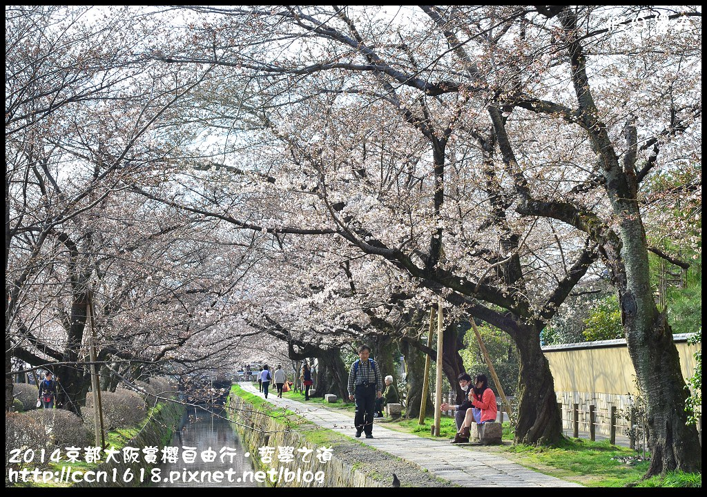 2014京都大阪賞櫻自由行.哲學之道DSC_0498