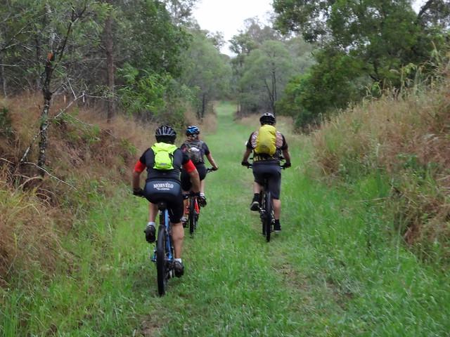 Samsonvale Rail Trail
