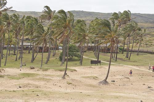 【写真】2015 世界一周 : アナケナビーチ/2021-04-05/PICT8660