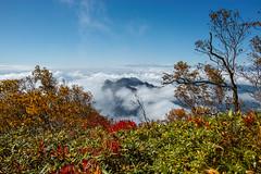戸隠連峰・西岳と北アルプス@高妻山山頂