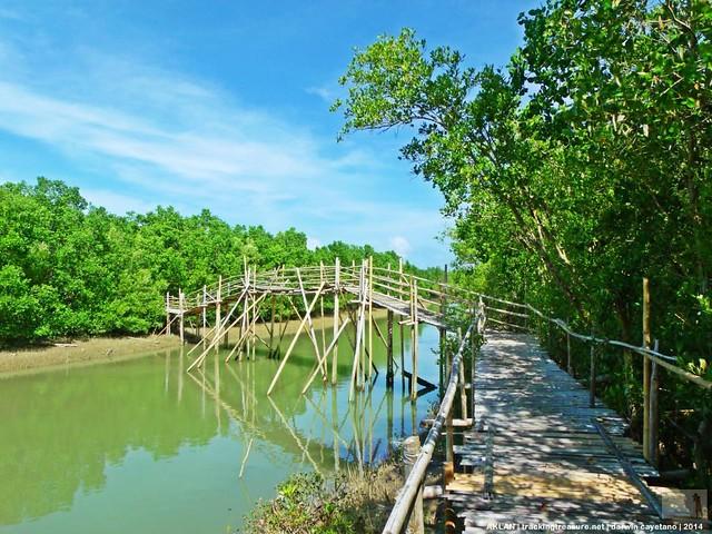 Bakhawan Eco-park