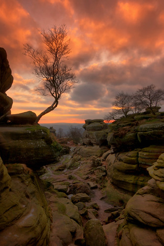 park uk winter light sunset shadow england sky tree english rock clouds canon landscape fire evening scenery rocks view britain yorkshire united great scenic sigma kingdom erosion formation national trust lone british lonely february nationaltrust brimham dales fiery brimhamrocks yorkshiredales 450d