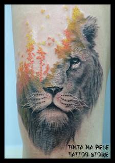 Leão - Lion