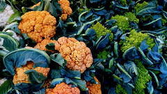 Colors of Cauliflower