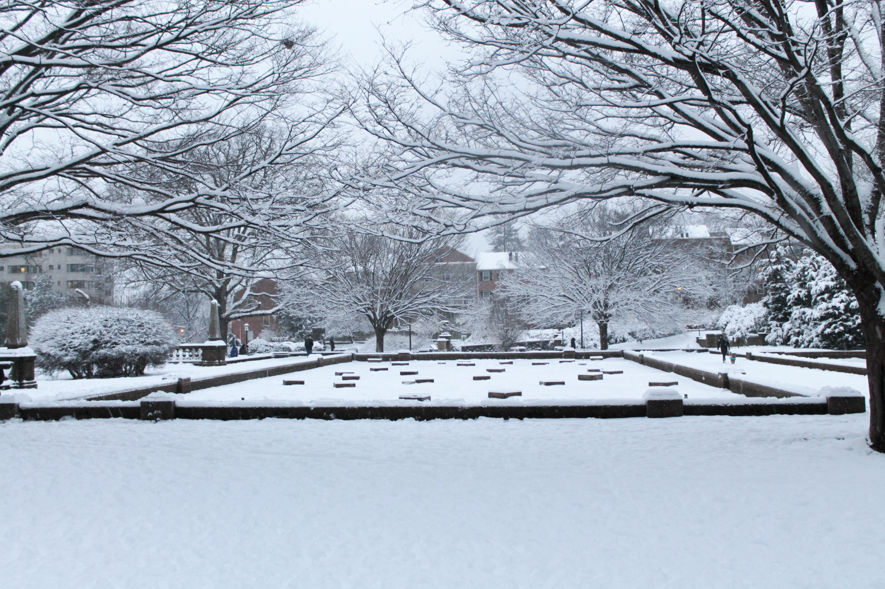 Snow-Day-Meridian-Hill-Malcolm-X-Park-Washington-DC-18.jpg