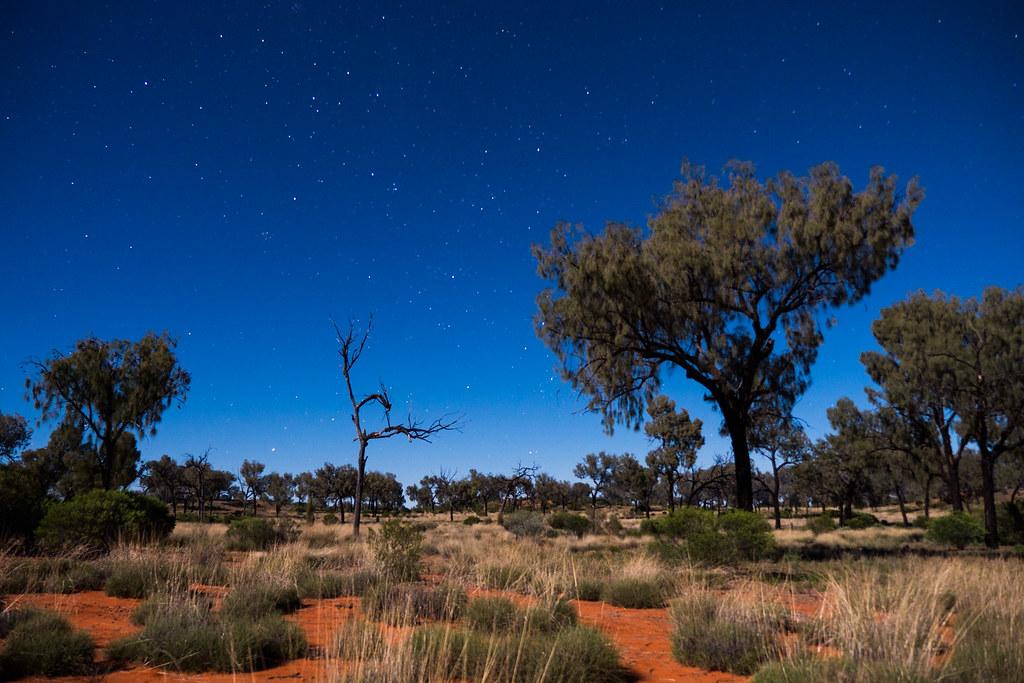 Northern Territory desert night sky