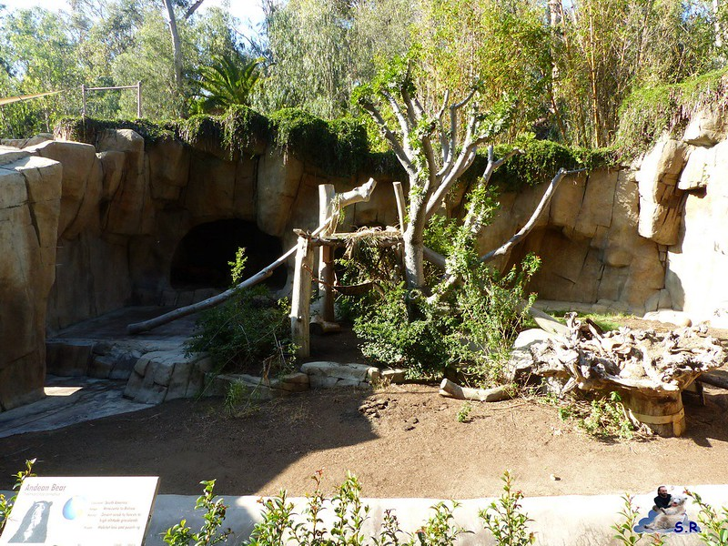 San Diego Zoo 10.11.2014 168
