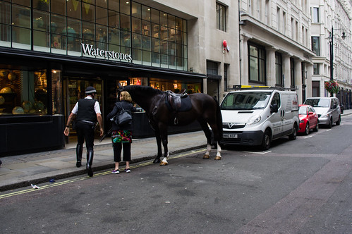 police horse #1