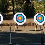 Fita targets