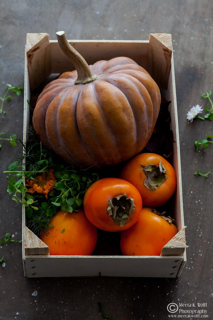 Pumpkin & Persimmon (0018)