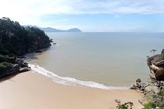 Parque Nacional de Bako. Borneo